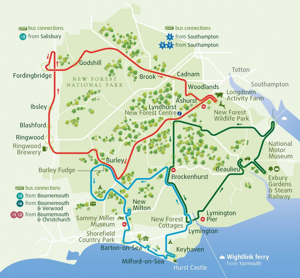 New Forest Bus Tour Routes