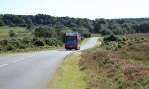Bus Tourism in the New Forest, England